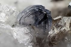 Titanite  Beura Quarries, Beura-Cardezza, Ossola Valley, Verbano-Cusio-Ossola Province, Piedmont, Italy   1.51 mm blue Titanite crystal. Collection Domenico Preite photo Matteo Chinellato