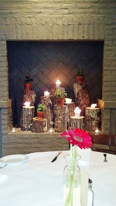 Love this idea, candles and plants on upright logs in the fireplace