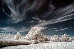 Herefordshire Winter