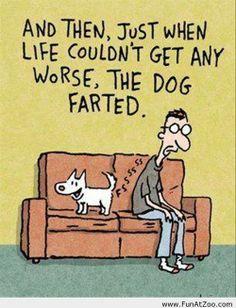 It's always the dog!