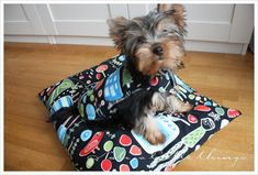 Free Puppy Coat Sewing Pattern for Dogs