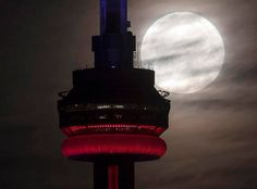 The supermoon sets behind the CN tower in Toronto on Monday, Nov. The brightest moon in almost 69 years lights up the sky this week in a treat for star watchers around the globe. (Frank Gunn/The Canadian Press via AP) Torre Cn, Redondo Beach California, Moon Setting, Live Picture, Red Moon, Beautiful Moon, Super Moon, Chicago Illinois, Fotografia