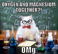 Chemistry lesson:  Oxigen and Magnesium together...?  OMg!!