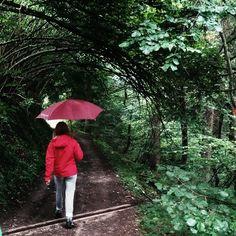 Quando fuori piove ... al @pinetahotels non ci abbattiamo! Ombrello #kwai e #emozioni