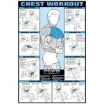 Chest Workout Laminated Fitness Poster