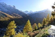 Herbst - Autumn - Schweiz - Switzerland