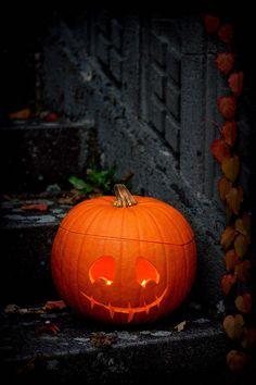 """Jack O'Lantern or Happy Halloween by jultchik7 on Flickr. """