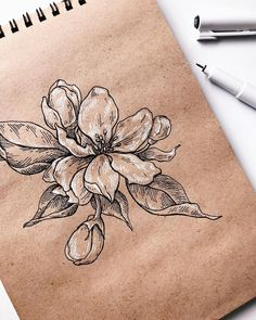 54 Trendy ideas flowers illustration black and white artists - Flowers ✿ - Black And White Sketches, Black And White Flowers, Black And White Painting, Black And White Illustration, Black Art, Black White, Illustration Blume, Illustration Sketches, Drawing Sketches