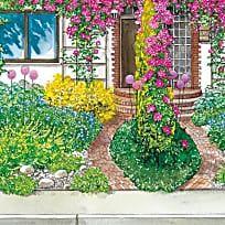 Ein Vorgarten blüht auf