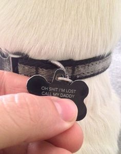 The best tag for your dog…
