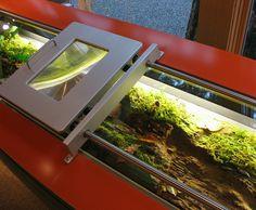 Slider magnifier - Tillamook Forest Center