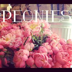 Peonies, the most lush, beautiful, cloud-like perfumed flowers <3