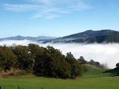 La nube bajó a besar las praderas verdes y los bosques. Acaricia el suelo desde el cielo con su tacto de algodón y de agua.