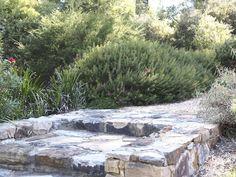 Bulli Garden Design by Mallee Design Australian Native Gardens