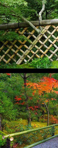 「垣」光悦寺/枯山水/秋 koetsuji, kyoto japan