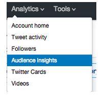 Painel Insights de Público | Twitter for Business