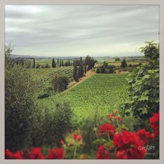 Afternoon delight Tuscan countryside by Grafthq.com
