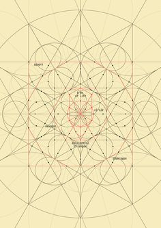 Sacred geometry art construction Connecting dots 1-100 #circle #triangle #square…