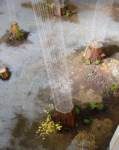 Tree trunks, imaginary rope tracing their growth  Keiki Sato