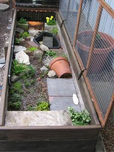 Guinea Pig Habitat - Dimension does matter. Happy, healthy and balanced and also buoyant guinea pigs delight in great deals of space. Box Turtle Habitat, Pig Habitat, Tortoise Habitat, Tortoise Care, Tortoise Turtle, Turtle Cage, Turtle Pond, Pet Turtle, Outdoor Tortoise Enclosure
