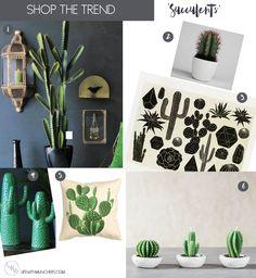 Cactus Home Decor   Shop The Trend