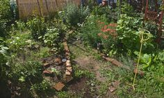 Starting a witch's garden, a moon garden and a cottage garden from scratch. Perfect for out front
