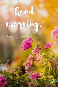 Good morning. Have a beautiful day!