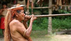 Yahua Blowgun Amazon Iquitos