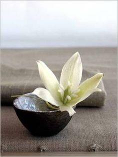 Yucca Flower Poster by Amelie Vuillon Zen Yoga, Meditation Space, Wabi Sabi, Deco Zen, Art Asiatique, Relax, Arte Floral, Ikebana, Love Flowers