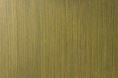 Ardesia - slate finish - Fossile sample│ http://decofinish.com/portfolio-item/ardesia/ #InteriorDesign #FauxFinish #DecorativeFinish #WallCoating