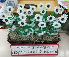 Dozens of Hopes and Dreams display ideas shared by teachers all over the world! https://storify.com/responsiveclass/hopes-dreams