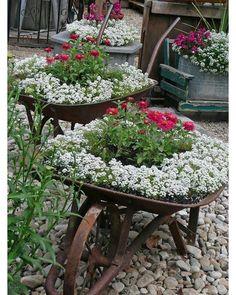 Small garden design 667588344746058939 - 48 Favourite Small Yard Landscaping & Flower Garden Design Source by Vintage Garden Decor, Diy Garden Decor, Garden Decorations, Balcony Decoration, Vintage Gardening, Flower Planters, Garden Planters, Garden Beds, Flower Pots