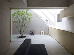 Love the exposed concrete, natural sunlight and the single tree in the living space.