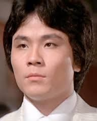 Lu Feng ~  Shaw Brother Kung Fu Actor, one of the 5 Venoms