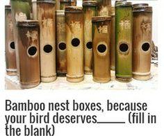 Bamboo Bird Box