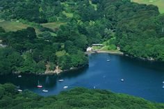 View of the Helford River