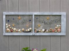 Under the Sea..Sea shells, Beach Glass and Starfish