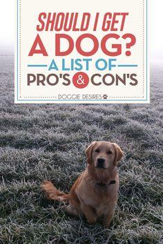 Should I get a dog? >> http://doggiedesires.com/should-i-get-a-dog/