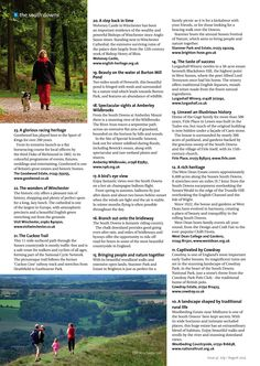 ~ 50 ways to explore the South Downs (part 3) ~ #locallife #SouthDowns #explore #history #heritage #health #countryside #rural #Hampshire #Sussex