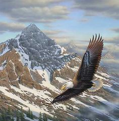 "Rick Kelley /""On Freedoms Wing/"" Eagle Mountain Art Print-Framed 14/"" x 19/"""