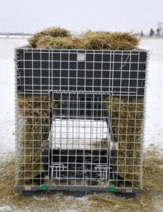 Dog Crate I Think I Will Make My Own Not Pay 1100 That 39 S Crazy