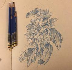 Chrysanthemum tattoo sketch.