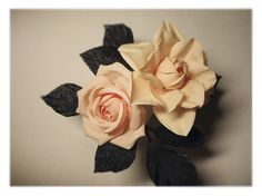 rose & Gardenia | Flickr - Photo Sharing!