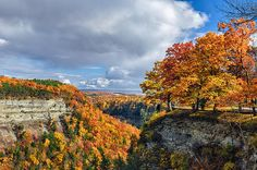 Autumn In Letchworth by Mark Papke