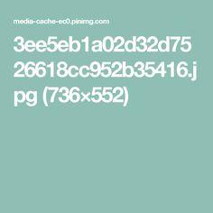 3ee5eb1a02d32d7526618cc952b35416.jpg (736×552)