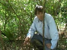 A FOREST GARDEN YEAR Perennial crops for a changing climate by Martin Crawford - YouTube