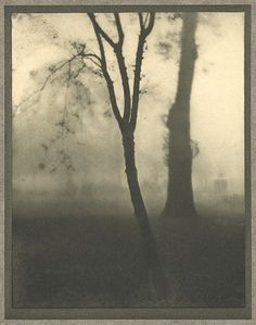 Kensington Gardens, November  Coburn, Alvin Langdon, b.1882-1966  London, 1910
