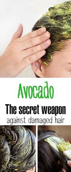 Avocado, the secret weapon against damaged hair.