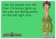 I bet the people who left their Christmas lights up last year are feeling pretty on the ball right now. | Snarkecards