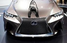 Car Hood Vinyl Decal Graphics Stickers Animal Predator Shark (Ab1412)